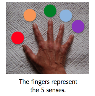 hand + 5 colors