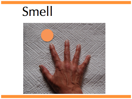 smell hand